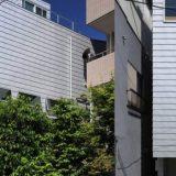 Super Skinny house