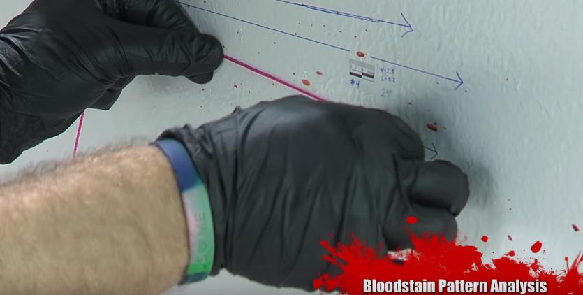 تحليل بقع الدم