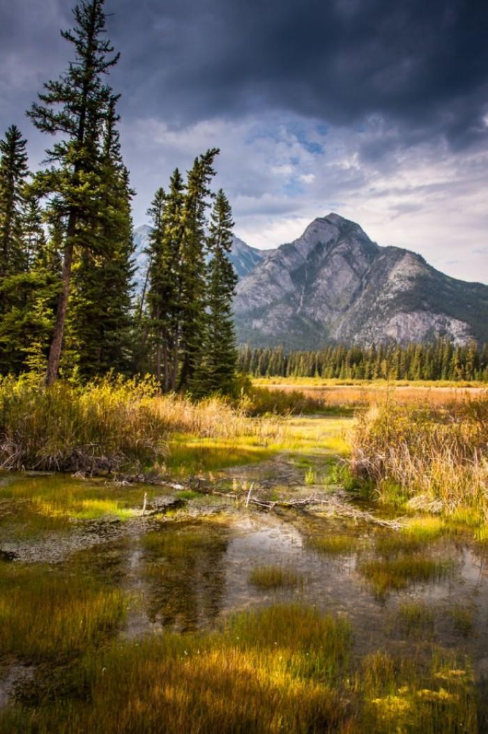 جبال روكي الكندية
