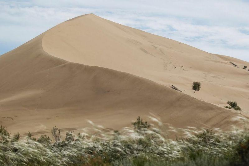 الصحراء في كازاخستان