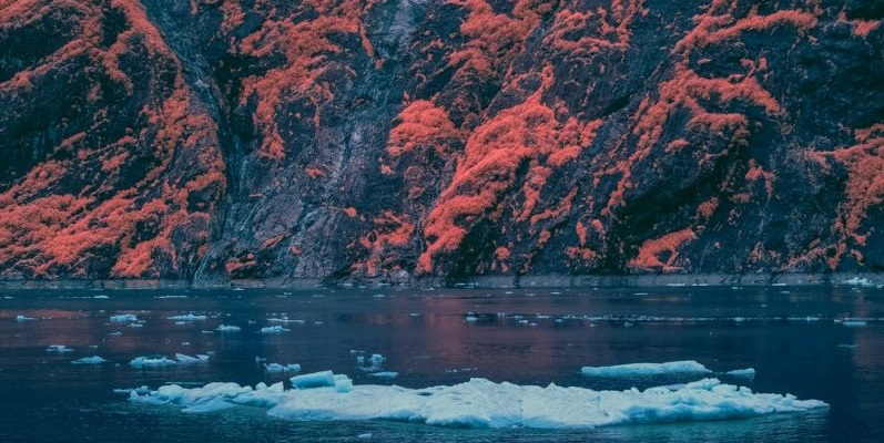 كيف تكون الطبيعة بالتصوير بالأشعة تحت الحمراء ؟
