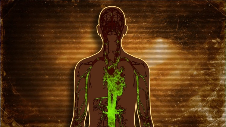 body-toxins