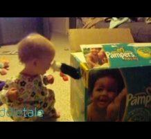 طفل يلعب مع قطو متخبي في الكرتونة