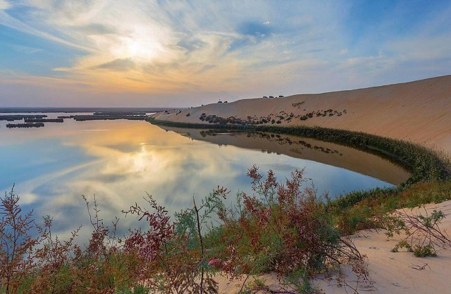 Image result for بحيرة الاصفر