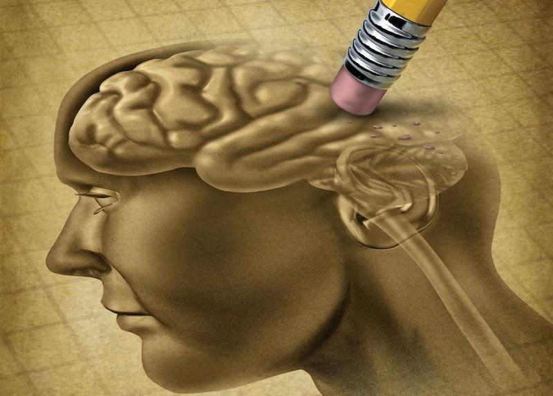 معدل ذكاء البشر