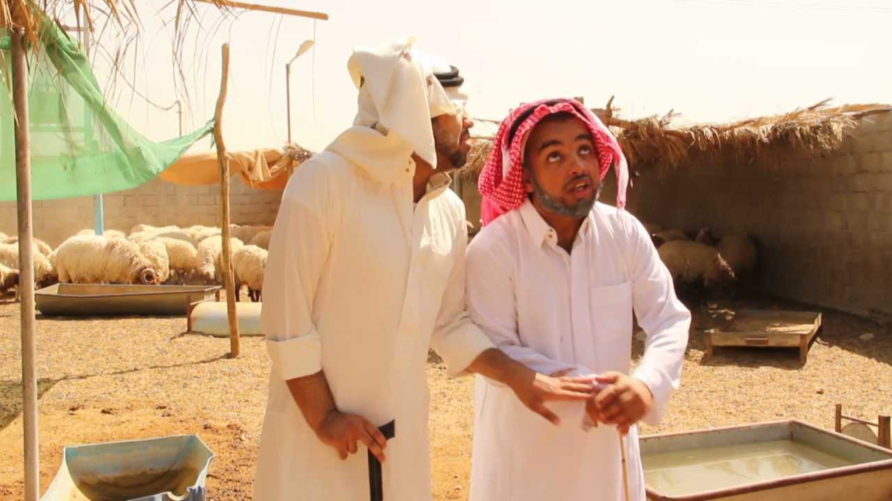 حقره بقره : خروف العيد
