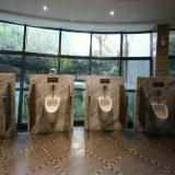 Five-Star Public Toilet