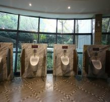 Five-Star Public Toilet