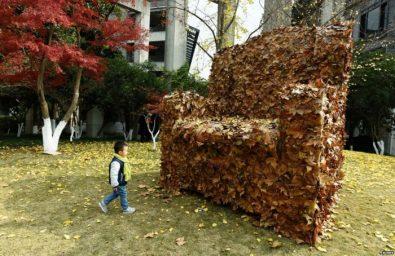 صور حول العالم: أريكة من أوراق الشجر المتساقطة في الصين والمزيد..