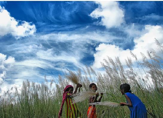 فصول السنة في بنغلاديش