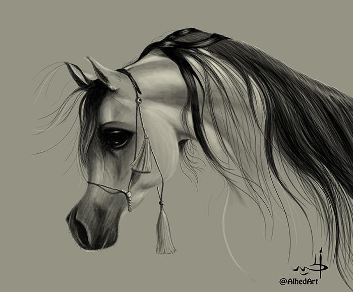 الحصان العربي 29117