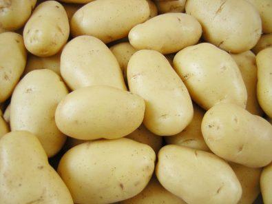 انتبه تخلط البطاطس في الخلاط؟
