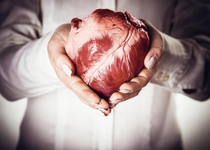 سرطان القلب