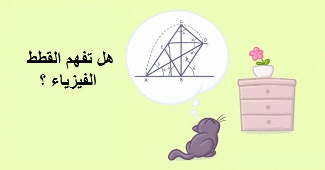 القطط و الفيزياء