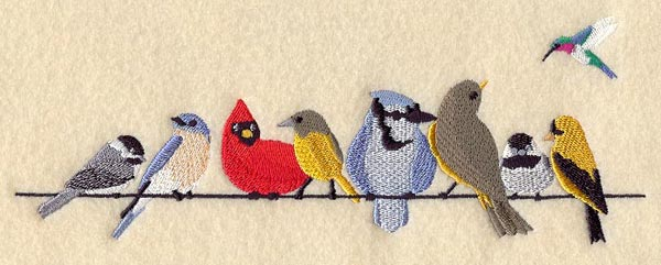 """ما أصل مقولة """"الطيور على أشكالها تقع""""؟"""