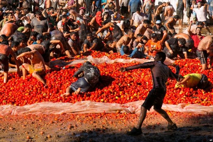 صور حول العالم: مهرجان التراشق بالطماطم في تشيلي والمزيد..
