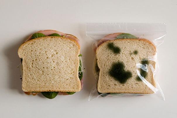 غطاء ساندوتش