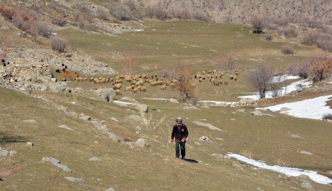 قرية تركية يسكنها رجلٌ واحد