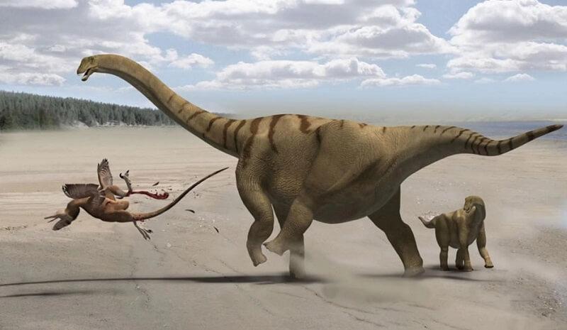 كيف تحصل الديناصورات على أسمائها؟