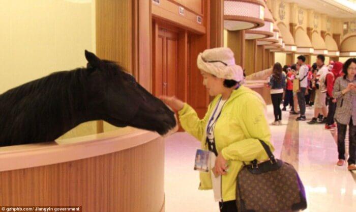 بالصور: هل هذا اسطبل للخيول أم فندق فاخر؟