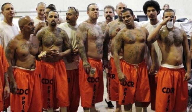 عصابة الأسود السوداء