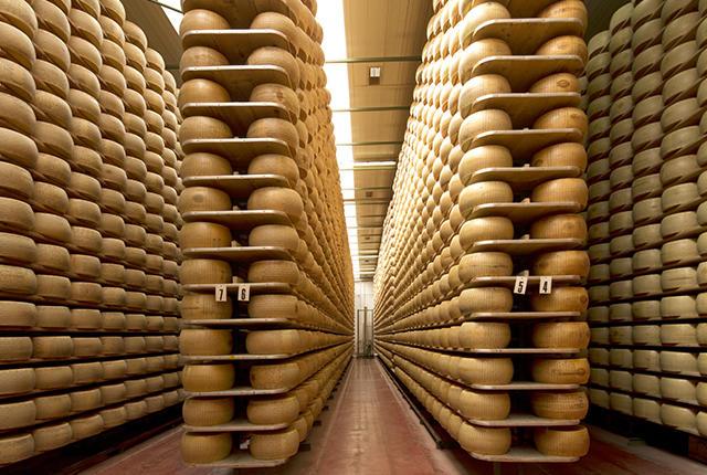 بنك الجبن الإيطالي