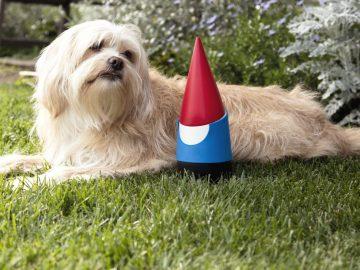 google-gnome
