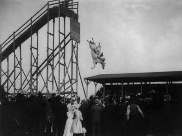 horse-dive