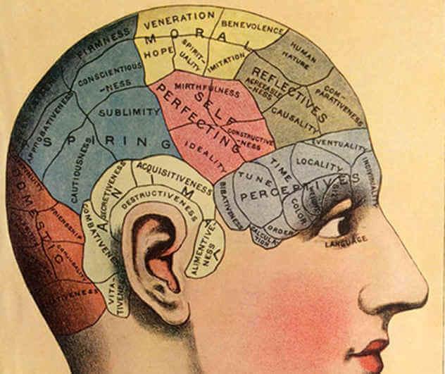 فرسة الدماغ