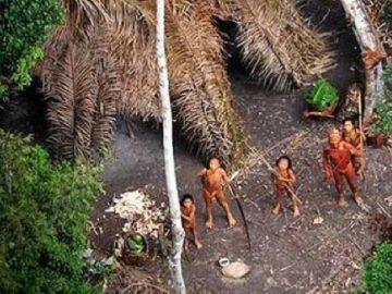 جزيرة هندية