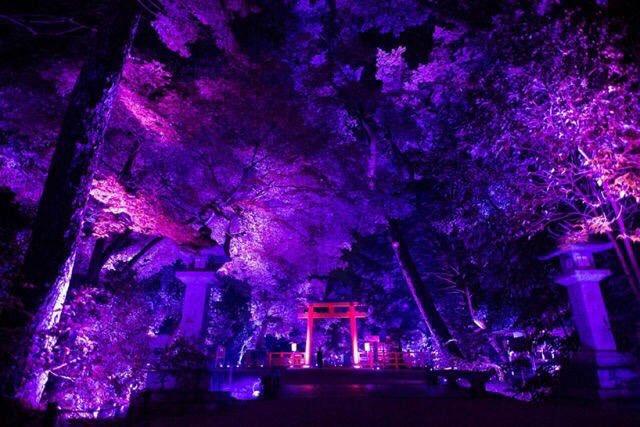 حديقة شموغامو