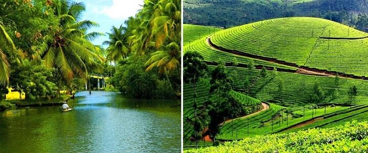 منوعات: نظرة على الطبيعة الساحرة في ولاية كيرلا الهندية..