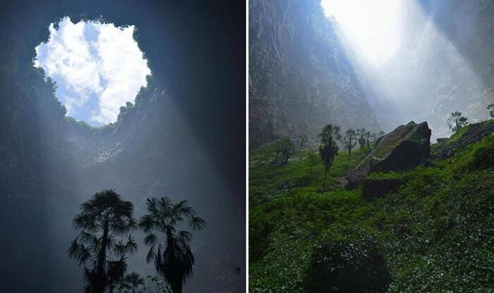 منوعات: غابة تحت الأرض في كهف بمنطقة كوبي الصينية، والمزيد..