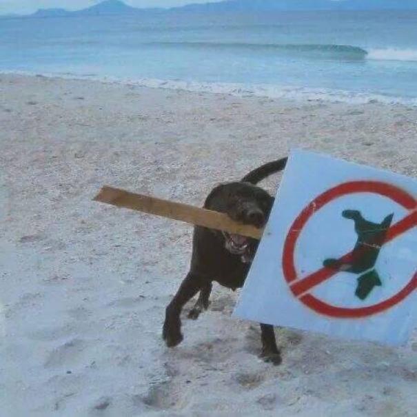 كسر القواعد