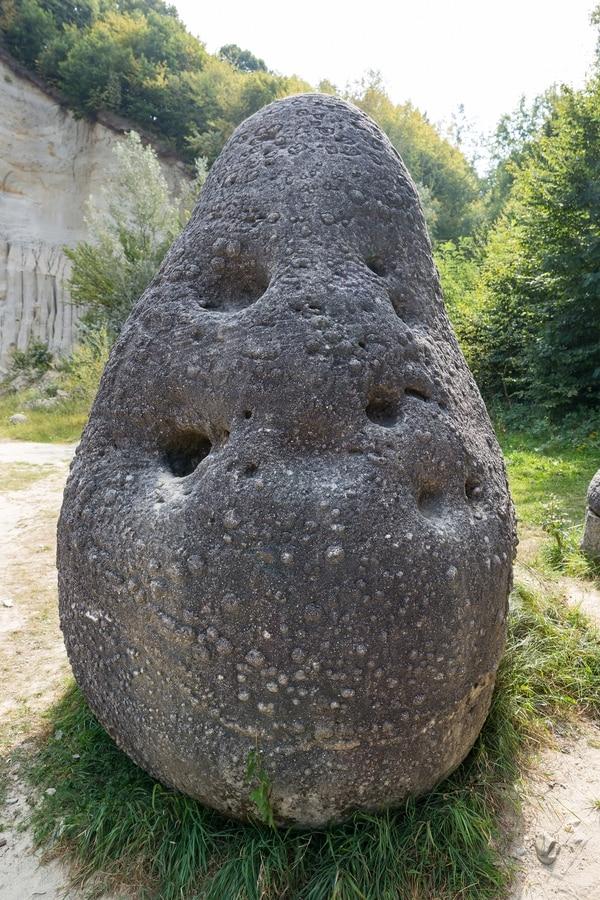 غرائب وعجائب 2017_ما الحجارة الحيّة