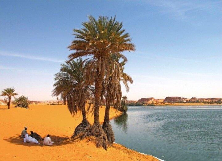 بحيرات تشاد