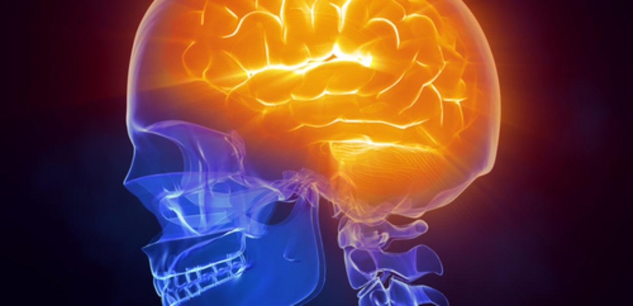 خدعة بسيطة تزيد من قوة ذاكرتك وتجعل حفظ المعلومات