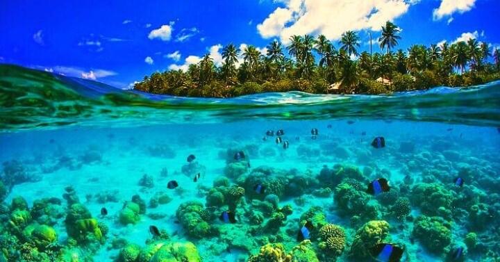 جزر سيشل