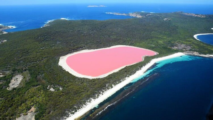 البحيرات الوردية