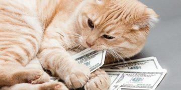 أغنى الحيوانات الأليفة